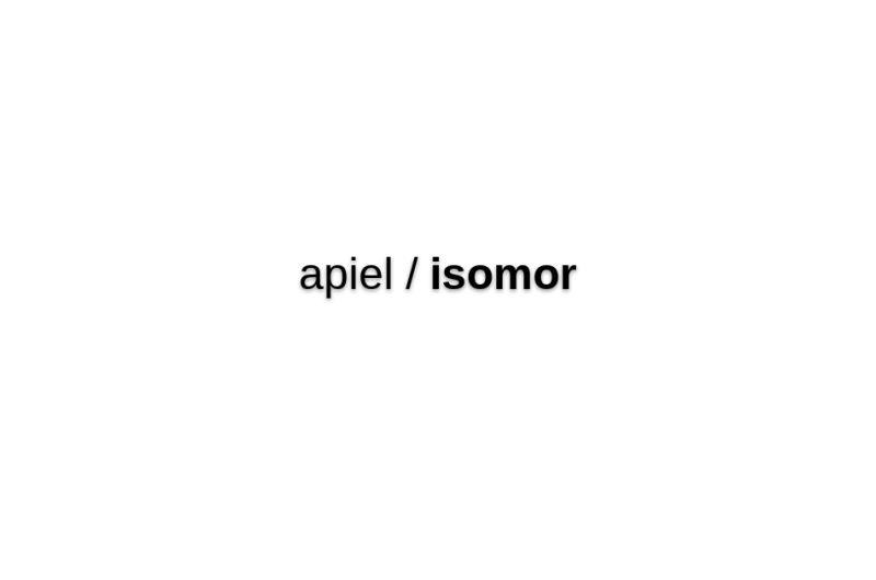Isomor-vue-app