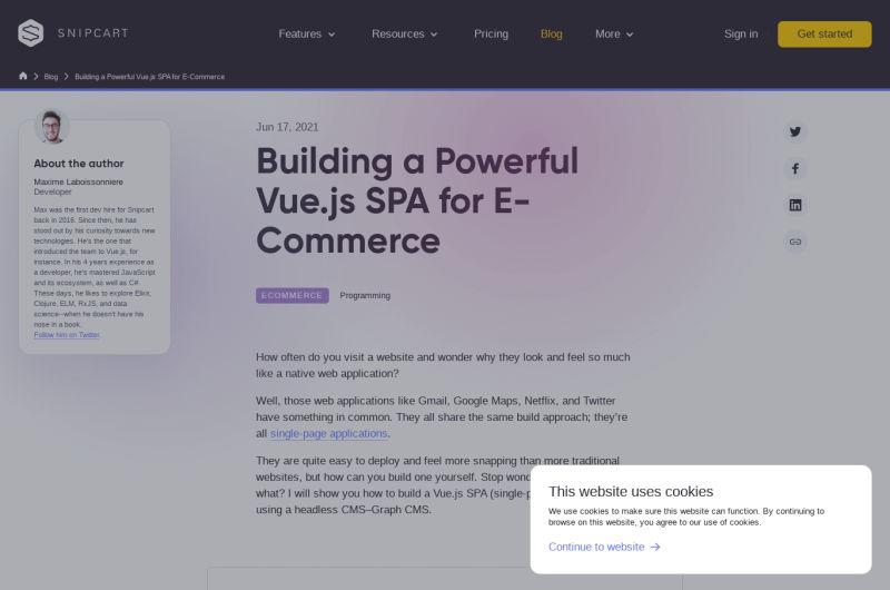Vue.js SPA: Build A Powerful E-Commerce App